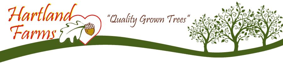 Hartland Farms - Quality Grown Trees